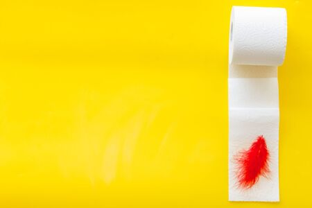 Disease of colon. Proctology concept with toilet paper roll and red feather on yellow background top view copyspace