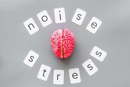 Stress and noise text with brain for psychological health in office concept on gray background top view.
