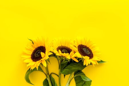 Sunflowers on yellow background top view mock up