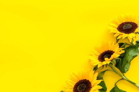 Field flowers design with sunflowers frame on yellow background top view space for text Banque d'images