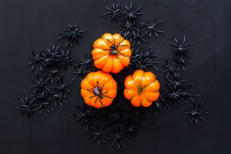 Halloween composition with pumpkins, spiders on black background top view