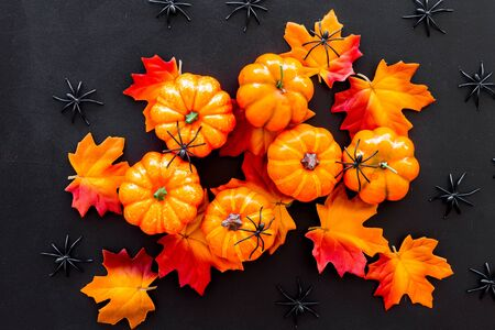 Nice halloween background. Small spiders among leaves and pumpkins on black top view. Imagens