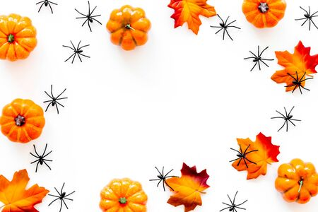 Nice halloween frame. Small spiders among leaves and pumpkins on white top view.