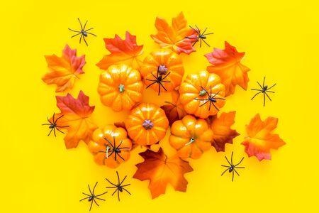 Halloween composition with pumpkins, spiders on yellow background top view