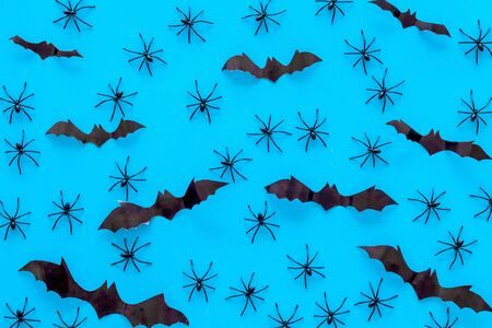 Stylish Halloween design. Bats and spiders on blue background top view. Stock Photo
