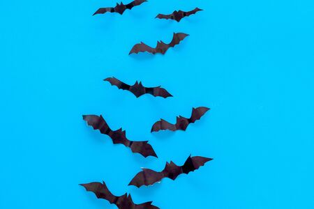 Halloween design. Bats on blue background top view copy space