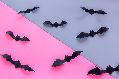 Halloween background with bats on pink and blue table top view Stock Photo