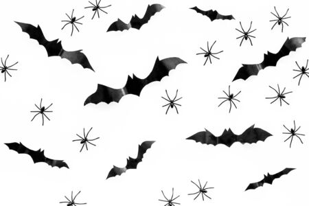 Stylish Halloween design. Bats and spiders on white background top view pattern