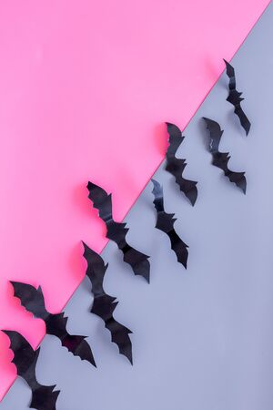 Halloween design. Bats on pink and blue background top view space for text Stock Photo