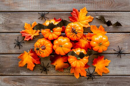 Halloween composition with pumpkins, spiders and bats on dark wooden background top view copy space