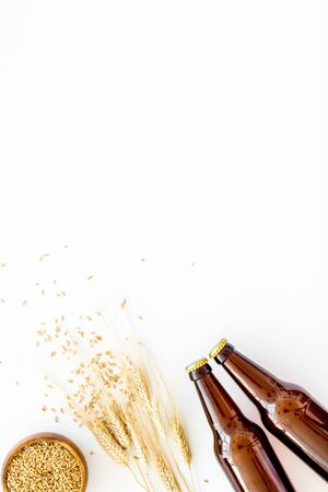 Beer background with barley on white background top view.