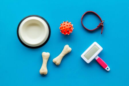 Set of treats and toys for pets with bones, collar and bowl on blue background top view.