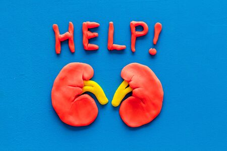 Kidney illness and treatment. Word help and organ on blue background top view. 写真素材
