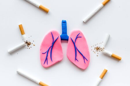 Harm of smoking and cancer. Lungs and cigaretts on white background top view. Stock Photo