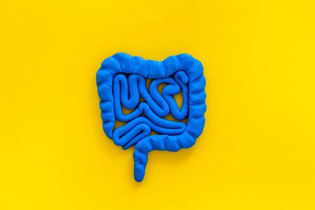 Intestines health. Guts on yellow background top view.