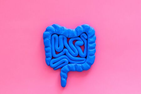 Intestines health. Guts on pink background top view copy space