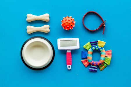 Pets accessories like bones, collar and bowl on blue background top view flat lay