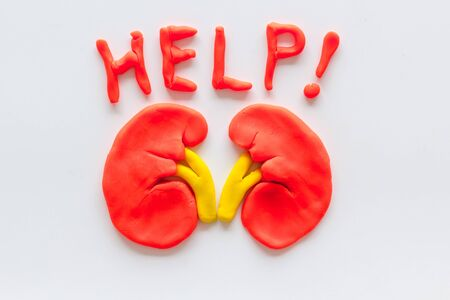 Kidney illness and treatment. Word help and organ on white background top view