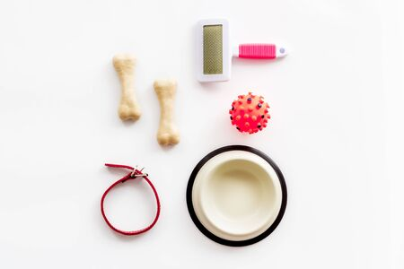 Set of treats and toys for pets with bones, collar and bowl on white background top view flat lay
