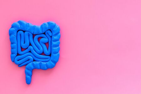 Intestines health. Guts on pink background top view space for text