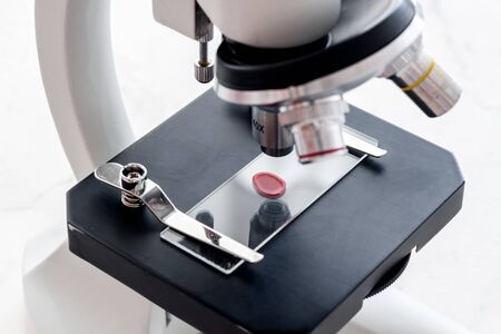 Blood drop under microscope on white background