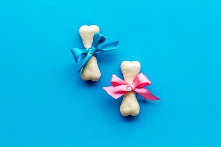 Small present for dogs. Chewing bones with bow on blue background top view copy space