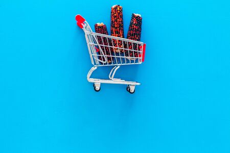 Buy food for hamsters. Con ear in shopping chart on blue background top view.