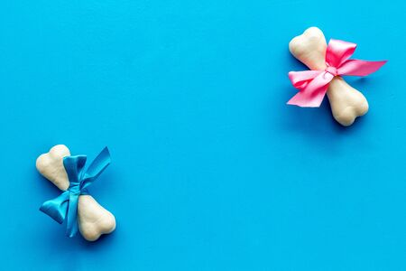 Small present for dogs. Chewing bones with bow on blue background top view.