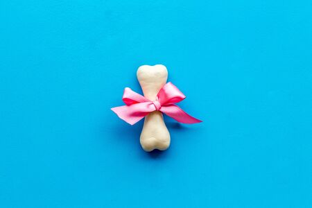 Small present for dogs. Chewing bones with bow on blue background top view space for text