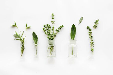 Herbal formulations for health care on white background top view pattern Stock Photo