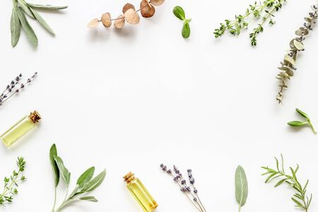 Apothecary of natural wellness and self-care. Herbs and medicine on white background top view frame copy space Stock Photo