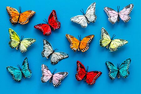 Multicolored tropical butterflies on blue background top-down pattern