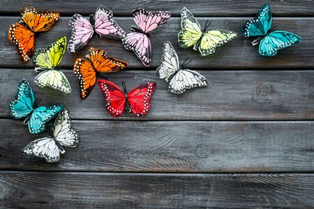 Multicolored tropical butterflies on dark wooden background top-down frame copy space Stock Photo