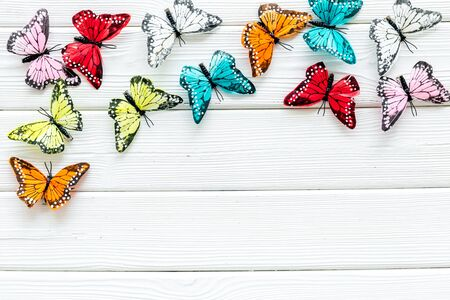 Butterfly - colorful and bright set - on white wooden background top-down.