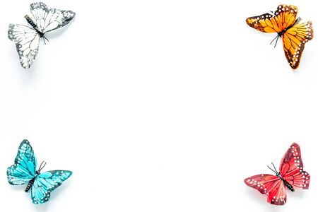 Butterfly - colorful and bright set - on white background top-down. Stock Photo