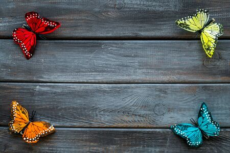 Butterfly - colorful and bright set - on dark wooden background top-down.
