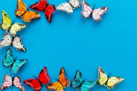Butterfly - colorful and bright set - on blue background top-down frame.
