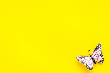 Beautiful tropical butterfly on yellow background top-down copy space