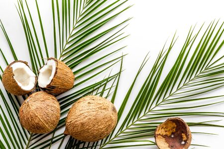 Coconuts and leaves - tropical still life on white background top-down.