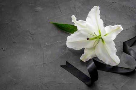 Funeral concept with lily and black ribbon, space for text 版權商用圖片