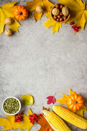 Harvest or Thanksgiving concept, top view, copy space 版權商用圖片