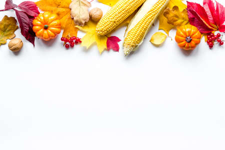 Autumn or Thanksgiving background with leaves and pumpkins 版權商用圖片