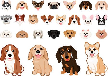 Various dog breed dog set