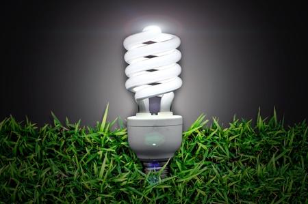 Energy saving light bulb over  green grass