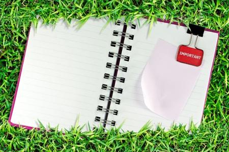 objetos cuadrados: p�gina en blanco del libro de la nota sobre la hierba y aislar blanco