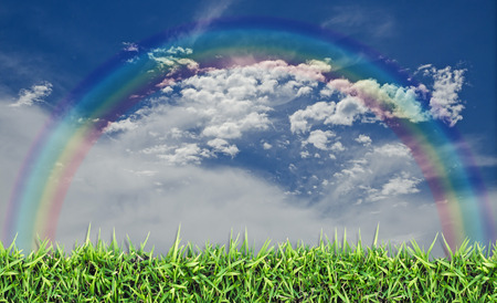 champ vert: Champ vert, herbe, ciel bleu et nuages ??blancs