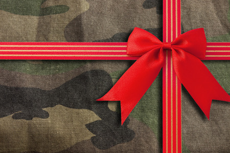 concealment: camouflage-military texture