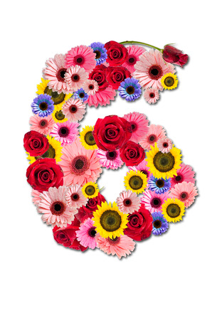 Ordinal: Nummer Sechs 6, Blume-Alphabet isoliert auf wei�.