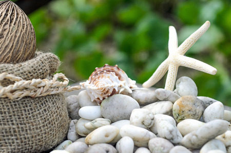 Vacation memories from the sea. Starfish and sack bag on Stone for postcard or Poster photo