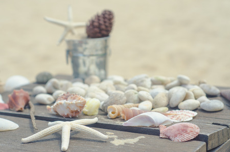 micro climate: Vacation memories from the sea. Shells zinc bucket for postcard or Poster